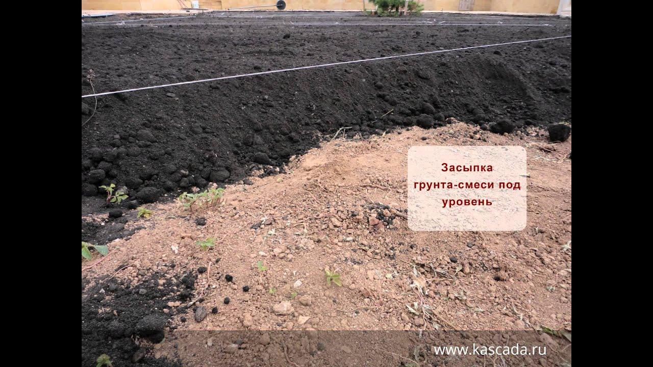 подготовка почвы под рулонный газон телефоны аптек