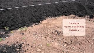 Пример подготовки участка под укладку рулонного газона(, 2016-02-08T09:37:28.000Z)