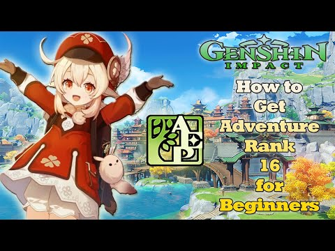 Genshin Impact | How to  Get Adventure Rank 16 for Beginners