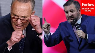Ted Cruz Successfully Blocks Chuck Schumer's Attempt To Pass For The People Act