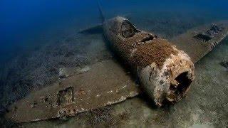 世界大戦でかつて使われていた物が残骸化し、静かに自然へ還っていくと...