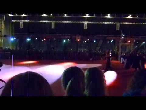 Exposition Canine de Douai, spectacle sur le Ring d'Honneur