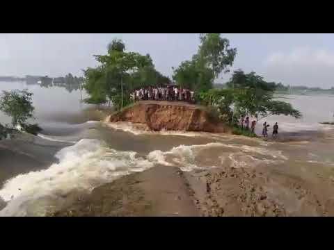 Raiganj Hot news at 3pm break the Barrier kulik river 15 August 17