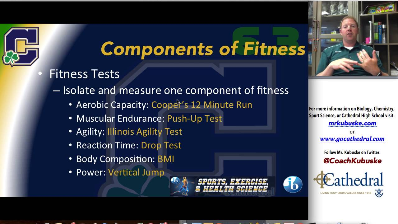 6 3 Components Of Fitness