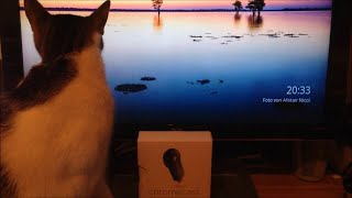 Chromecast: How to stream + watch free online movies, videos and live tv channels ( IPTV )