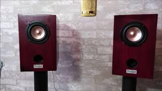 Download Test HEYIN HY-Y4Q6 Full -range Speaker Driver  MP3