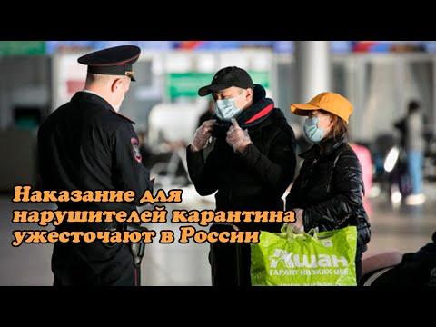 Наказание для нарушителей карантина ужесточают в России