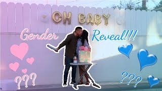 BEST GENDER REVEAL!!! (WITH A TWIST!!!)