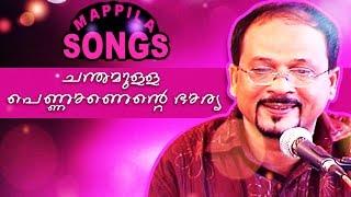 ചന്ദമുള്ള പെണ്ണാണ് എന്റെ ഭാര്യ  | Malayalam mappilapattukal | Edappal Bappu Songs 2015