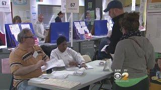 NY Primary: Democratic Voters