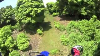 緑の中を抜けて丘に上がる林道(三重県 青山高原)