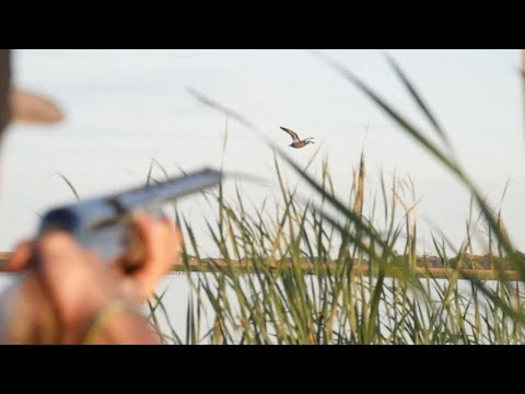 North Dakota Public Land Solo Duck Limit