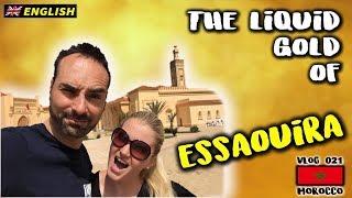 The Liquid GOLD of Essaouira (Morocco vlog)