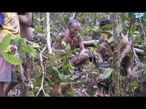 Junglerejsen Del 1,