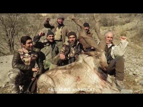 MARKHOR HUNTING (WORLD RECORD)