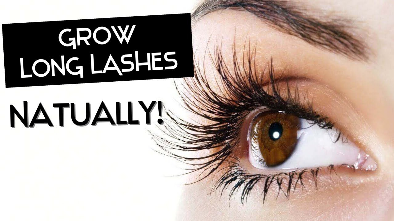 How to Grow Longer, Thicker Eyelashes & Eyebrows FAST! In ...
