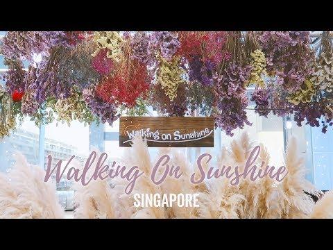 [CAFE & SALON] Walking On Sunshine in Singapore