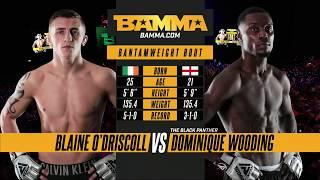BAMMA 32: Blaine O'Driscoll vs Dominique Wooding