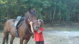 Konie ... Moja pasja !