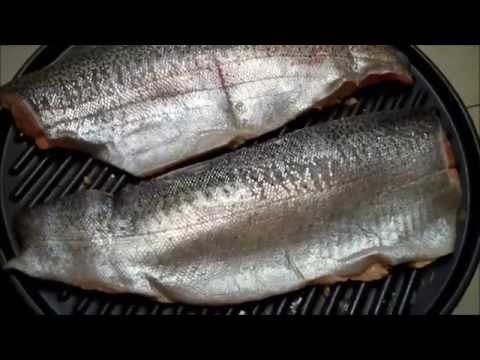 George Foreman Grill Grilling Fish Wow