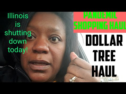 Illinois Shuts Down Today | Pandemic  Grocery Shopping Haul | Dollar Tree Haul