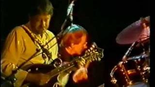 "The ""Angel Delight"" line-up of Dave Swarbrick, Simon Nicol, Dave Pe..."