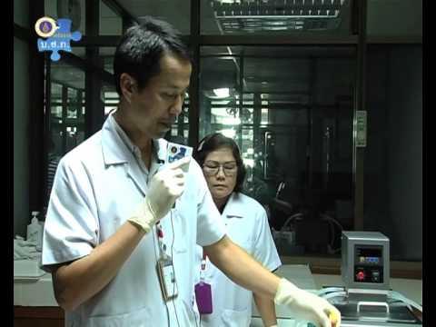 การกินเลือดของยุง ภาควิชากีฏวิทยาการแพทย์