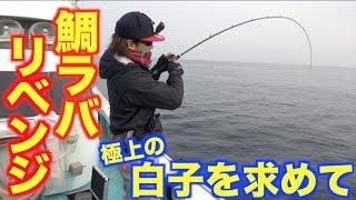 鯛の白子が美味すぎるから鯛ラバ釣りへ行く! thumbnail