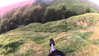 fallow deer hunt with 22lr