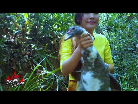 Unbelievable Catch and Cook Wild Duck by Amazing Girl In Forest