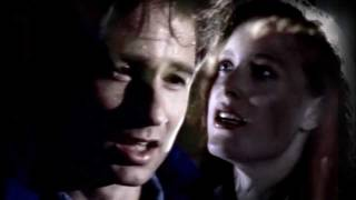 X-files- Mulder&Scully, love is the only truth