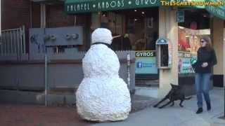 Страшный снеговик пугает прохожих и их собак