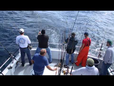 Whale watching in depoe bay oregon doovi for Depoe bay fishing charters