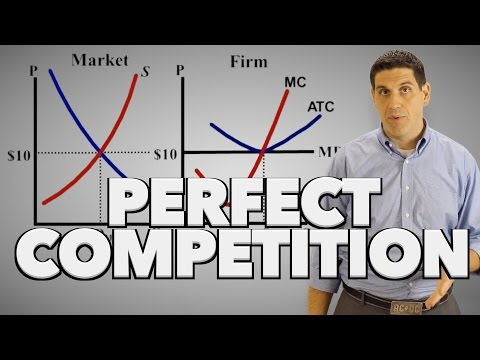 Perfect Competition in the Short Run- Microeconomics 3.8