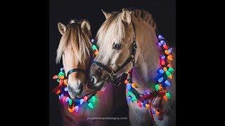 Праздник к нам приходит! Наряжаем игрушечную лошадь.