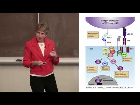 Fall 2016 Stanford Biology Chemistry Colloquium: Professor Carolyn Bertozzi, Stanford University