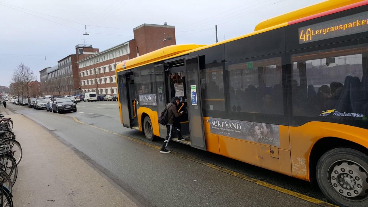 bus kobenhavn