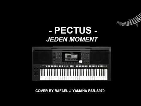 pectus jeden moment