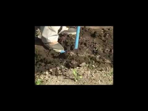 C mo hacer un compost en casa inta youtube - Como hacer compost en casa ...