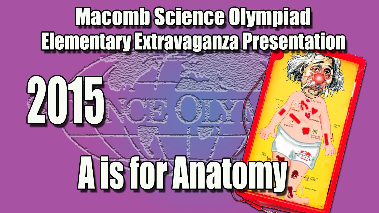 A is for Anatomy 2015 Extravaganza - YouTube