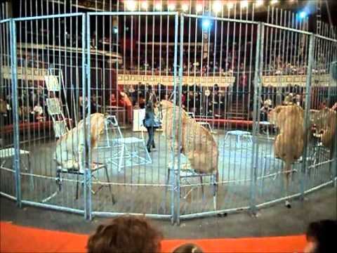 Odessa Circus Lion Show 27 02 2011 part1