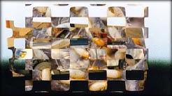 Termite Control | Fountain  Hills, AZ -- Cummings Termite & Pest Control