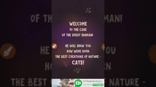 Создай своего кота!#1