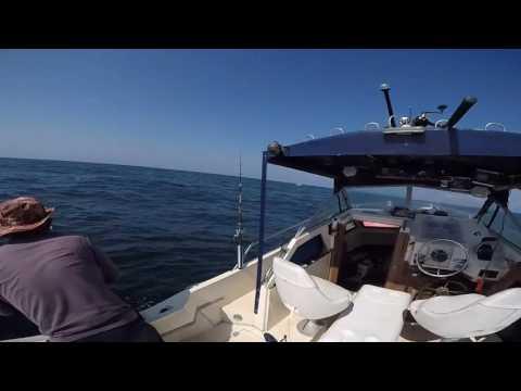 Fishing Trip Off Coast Of Savannah Ga
