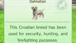 Nintendogs+cats: Dalmatian