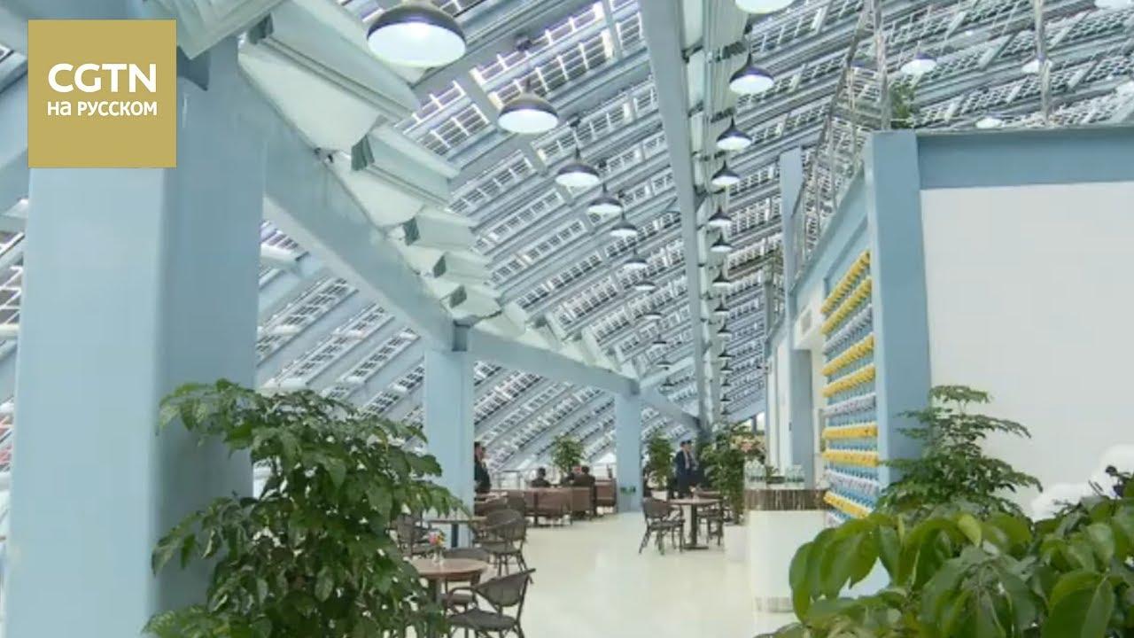 В Шанхае ввели в эксплуатацию крупнейшую в Китае солнечную зарядную станцию [Age0+]