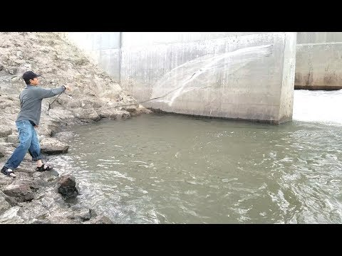 Cast Net Fishing in Spillway. EP 27