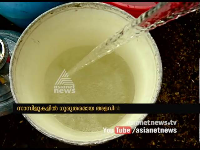 Coliform bacteria found in high quantities in Kozhikode water sources