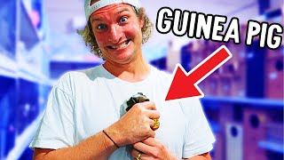GETTING NAZ A GUINEA PIG FOR 24hrs w/The Norris Nuts