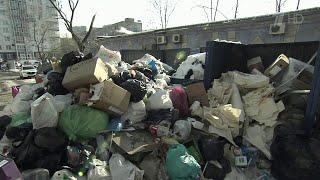Во дворах Владивостока появились горы мусора после новогодних праздников.